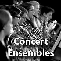 Concert Ensembles